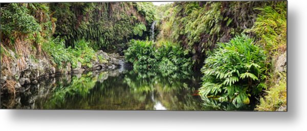 Tropical Reflections Metal Print