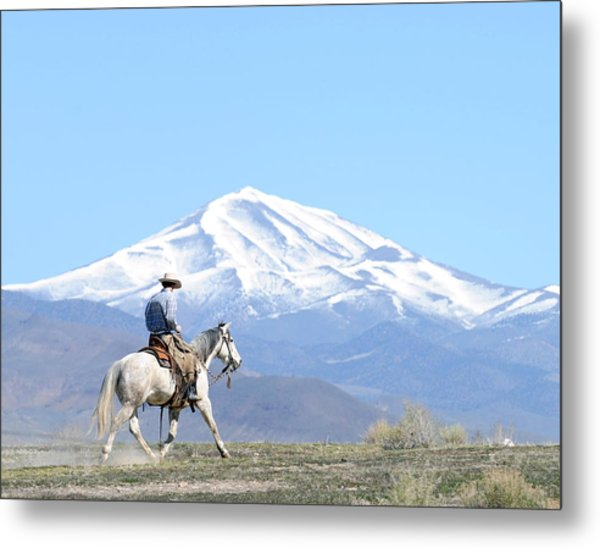 Trotting Out Metal Print by Lee Raine