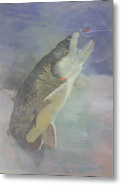 Trout To Fly Metal Print by Stephen Thomson