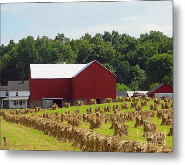 True Amish Farm Metal Print