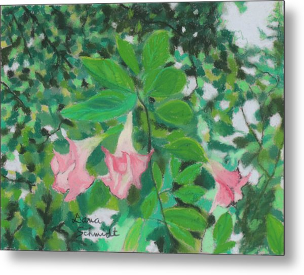 Trumpet Flower Tree Metal Print