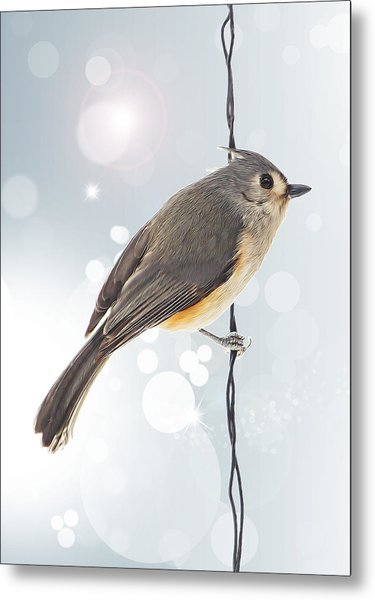 Tufted Titmouse Twinkle Metal Print