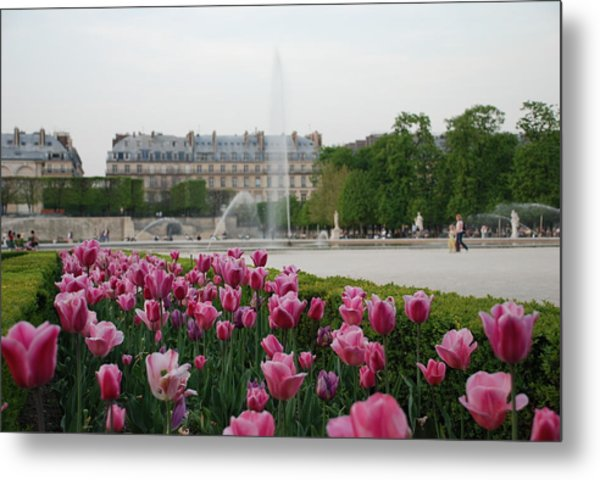 Tuileries Garden In Bloom Metal Print