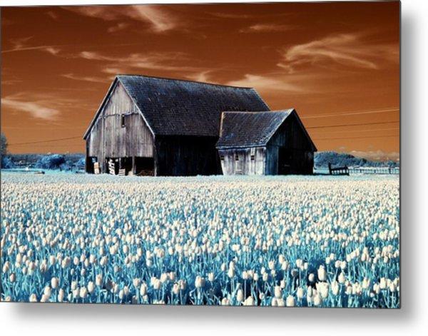 Tulip Barn Metal Print