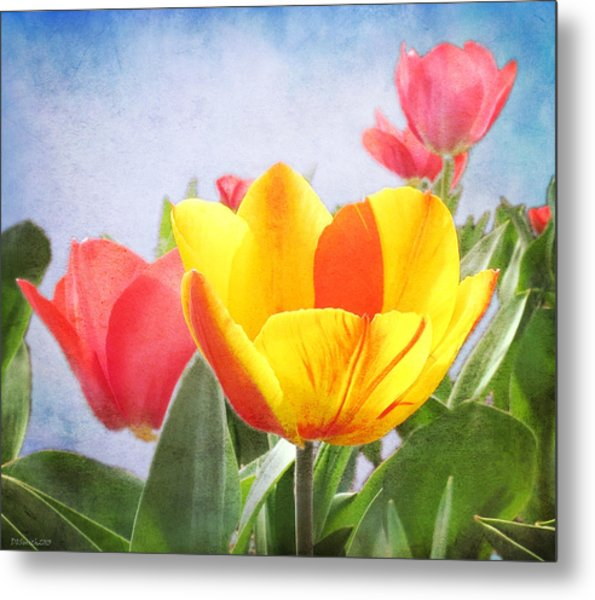 Tulip Joy Metal Print