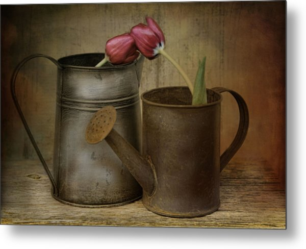 Tulip Tales Metal Print