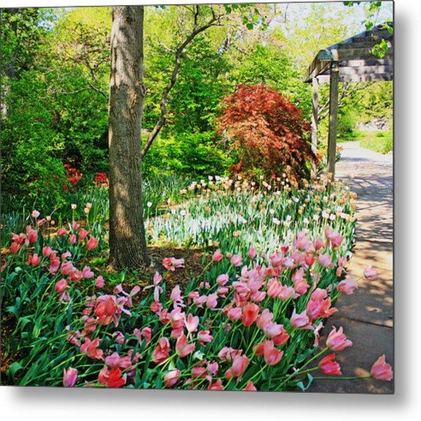 Tulip Trail Metal Print