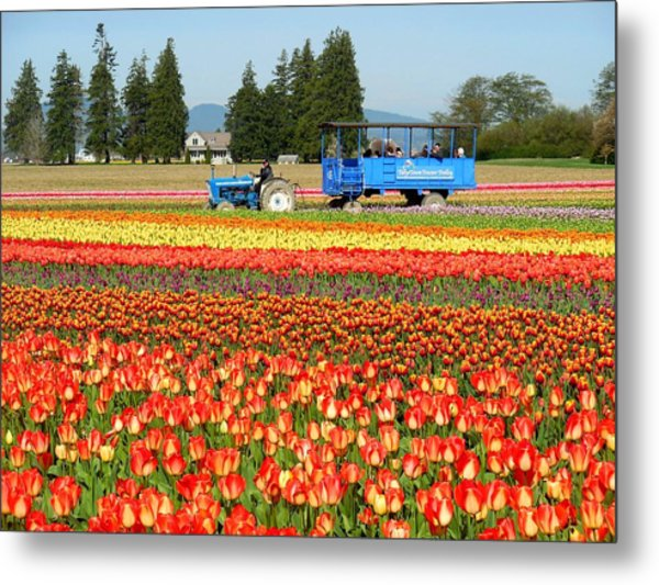 Tulip Wagon Metal Print