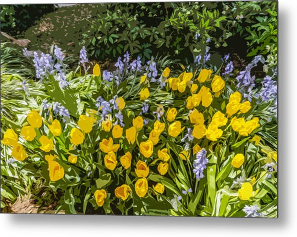 Tulips And Bluebells Metal Print by Gary Cowling