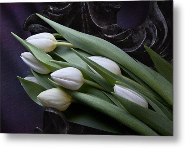 Tulips Laying In Wait Metal Print