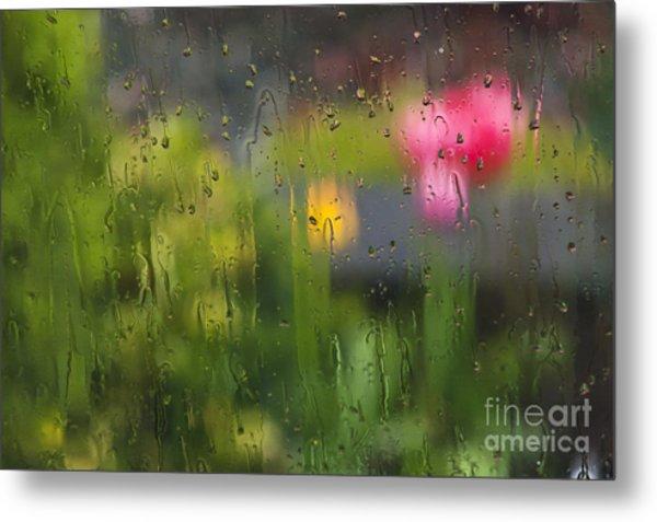 Tulips Through The Rain Metal Print