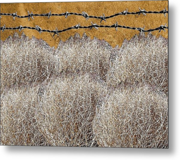 Tumbleweed And Barbed Wire Metal Print