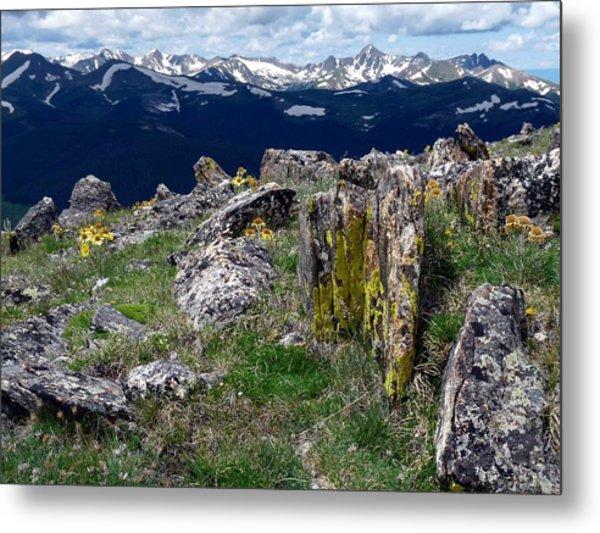 Tundra Views Metal Print