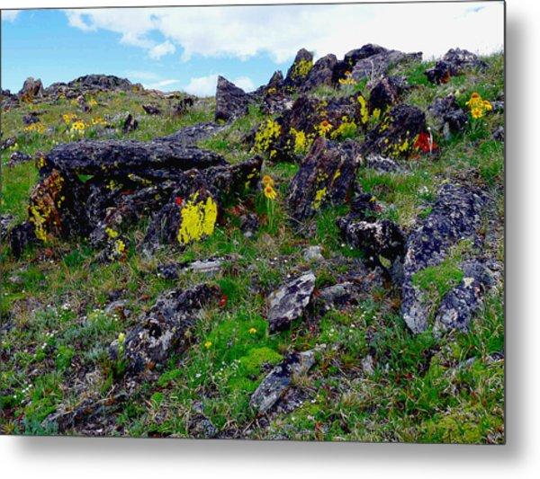 Tundra Yellows Metal Print