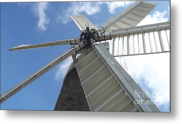 Turning In The Wind Metal Print