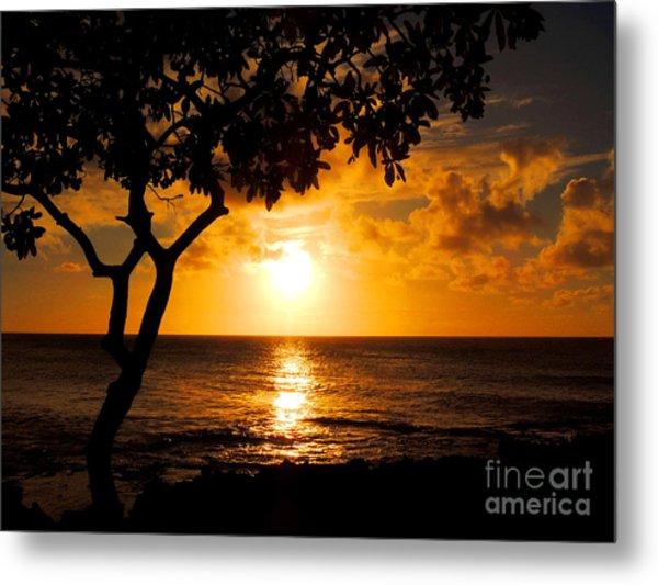 Turtle Bay Sunset Metal Print