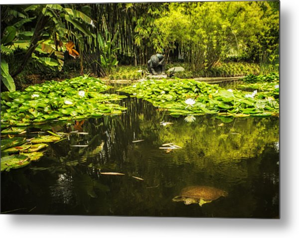 Turtle In A Lily Pond Metal Print