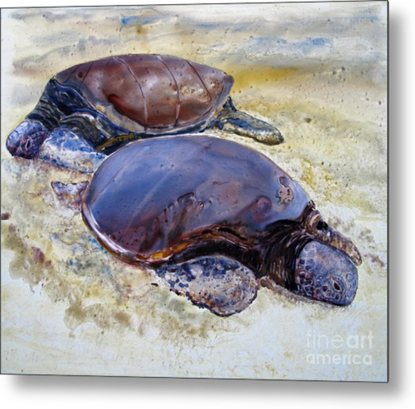 Turtle R And R Metal Print
