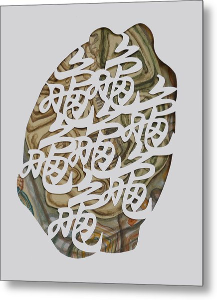 Turtle Shell's Inscription Metal Print