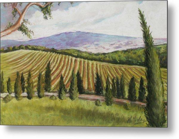 Tuscan Vineyard Metal Print