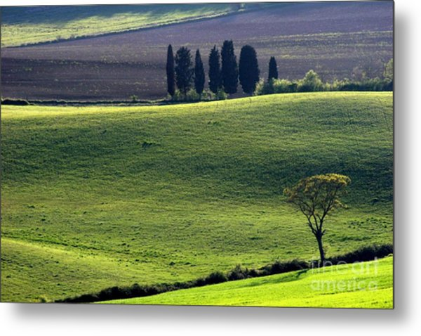 Tuscany Green Hills Metal Print by Arie Arik Chen