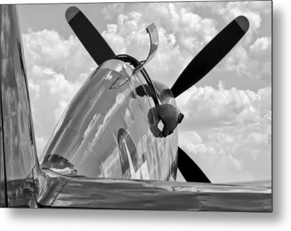 Tuskegee Red Tail Metal Print