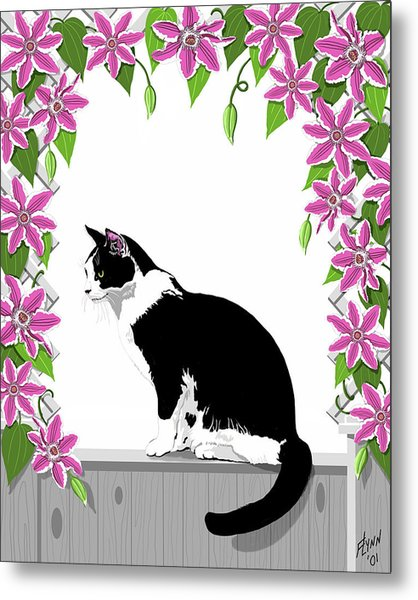 Tuxedo Cat And Clematis Metal Print