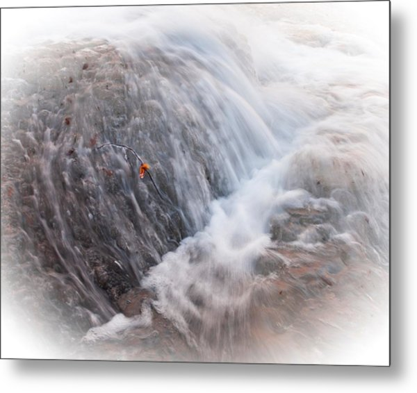 Twig Vs Ice And Water Metal Print