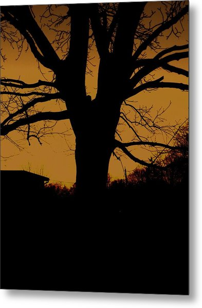 Twilight Metal Print by Christian Rooney