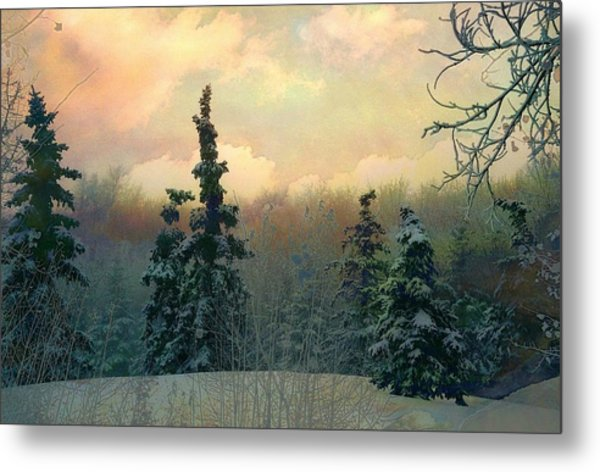 Twilight In The Forest Metal Print