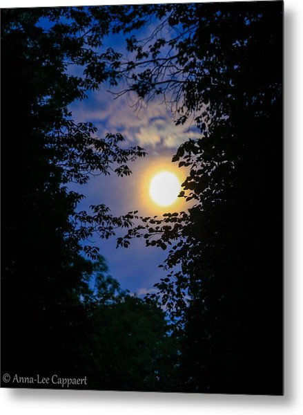 Twilight Moon Metal Print by Anna-Lee Cappaert