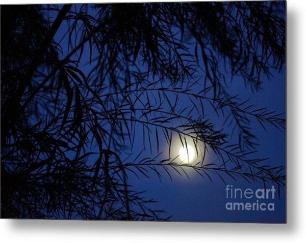 Twilight Moon Metal Print