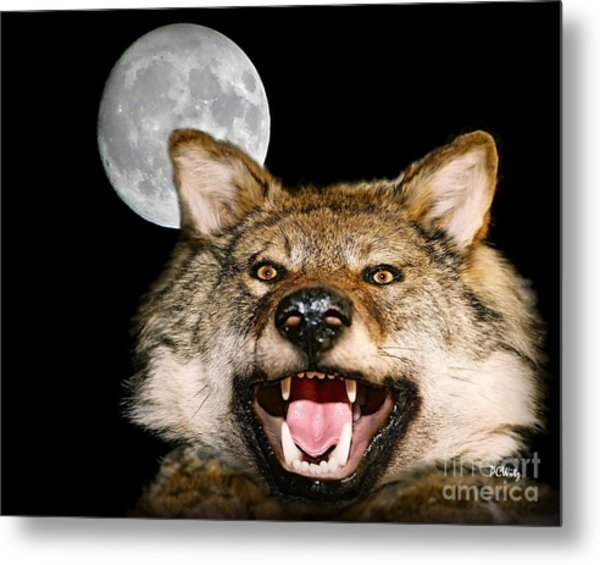 Twilight's Full Moon Metal Print