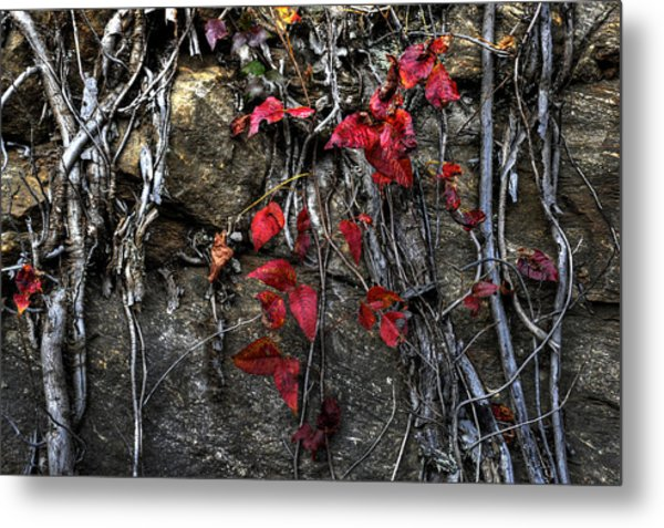 Twisted Red Metal Print