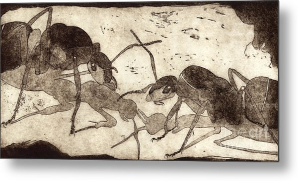 Two Ants In Communication - Etching Metal Print