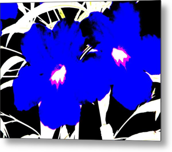 Metal Print featuring the photograph Two Blue Jack Flowers by David Clark