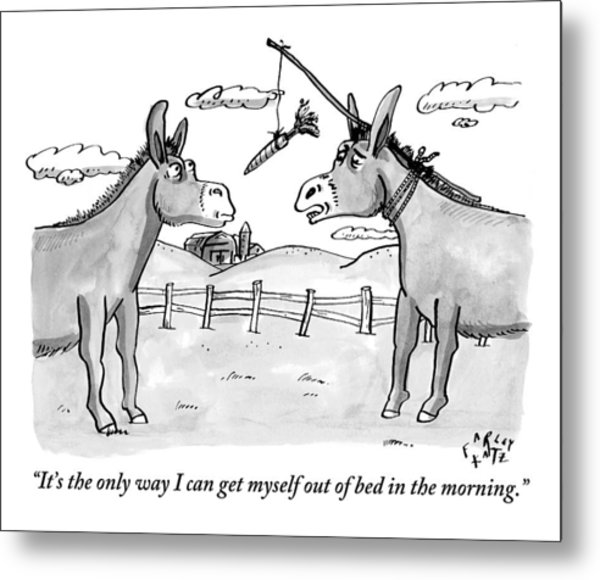 Two Donkeys Are Seen Talking To Each Other Metal Print