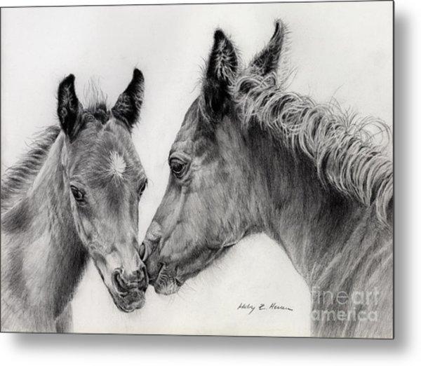 Two Foals Metal Print