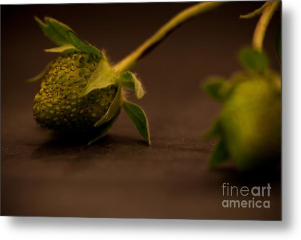 Two Green Strawberries Metal Print by Patricia Bainter