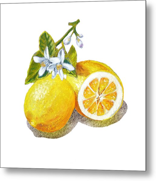 Two Happy Lemons Metal Print