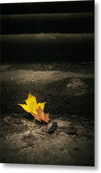 Two Leaves On A Staircase Metal Print