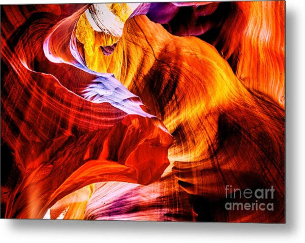 Two Lions Dance Metal Print by Az Jackson