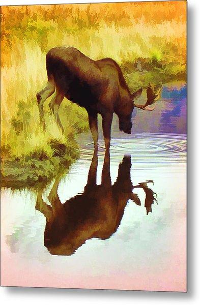 Two Moose  Metal Print