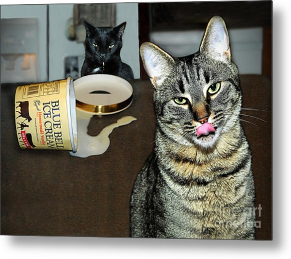 Two Naughty Cats Metal Print