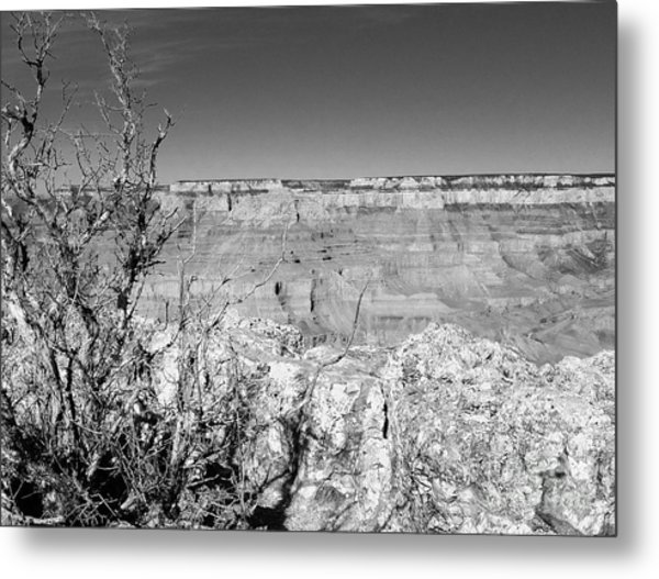 Two One Hundred Eighty One Metal Print by Debbie L Foreman
