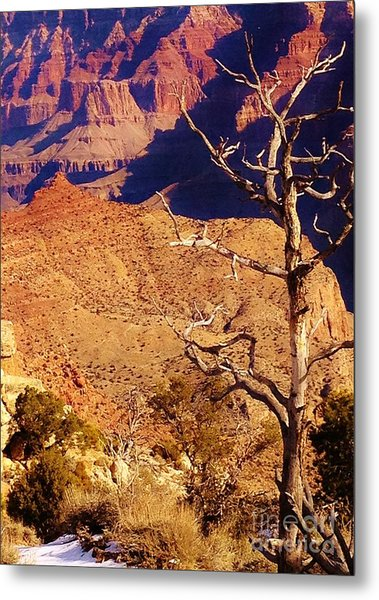Two One Hundred Eighty Three Metal Print by Debbie L Foreman