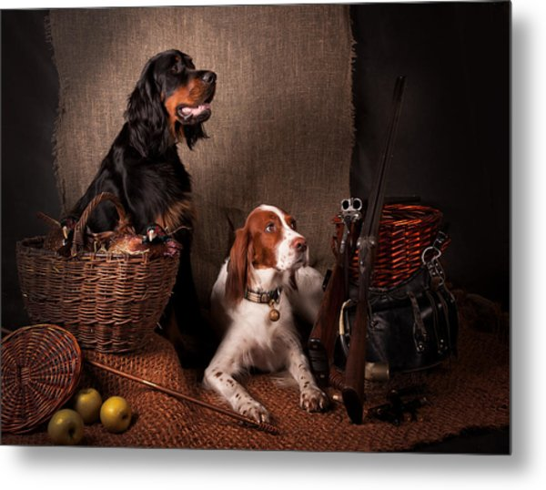 Two Setters... Metal Print by Tanya Kozlovsky