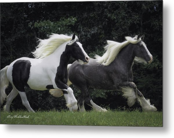 Two Together In Cadence Metal Print