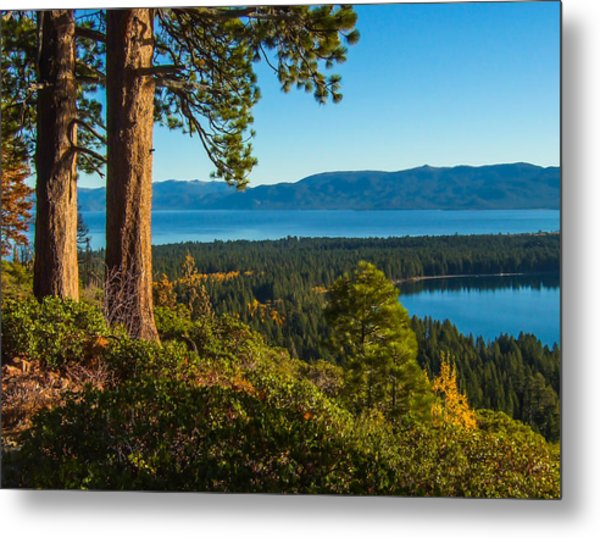 Two Trees Above Two Lakes Metal Print