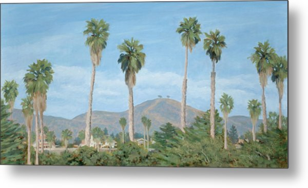 Two Tree's From Ventura State Park Metal Print by Tina Obrien